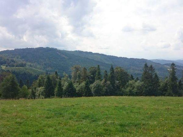 Zdjęcia Żabnica
